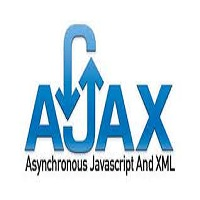 Professional Ajax(programming)