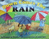 Lets Read and Find Out Science Stage 2 - Down Come the Rain