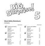 Big Surprise! 5 Worksheets