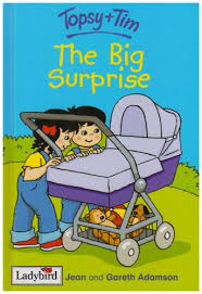 Topsy + Tim The Big Surprise