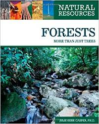 Natural Resources Forests More Than Just Trees