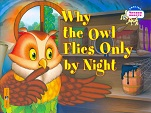Why the Owl Flies Only by Night